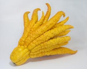 guessthefruit
